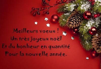 Photos De Joyeux Noel Et Bonne Annee.Joyeux Noel Et Bonne Annee La Floraison